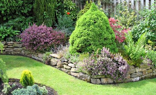 ideias para um jardim bonito:Mari de casa